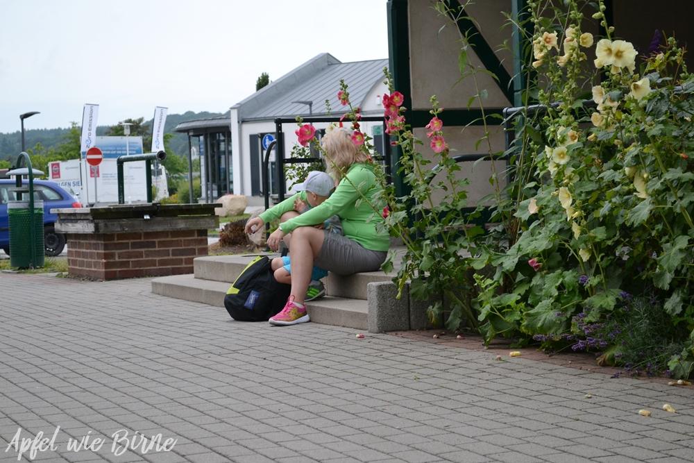 Bahnhofe Rasender Roland