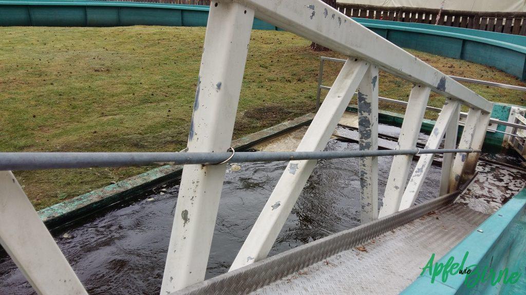 Wasserbahn 3